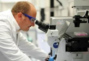 """I """"superbatteri"""" causeranno più vittime del cancro"""
