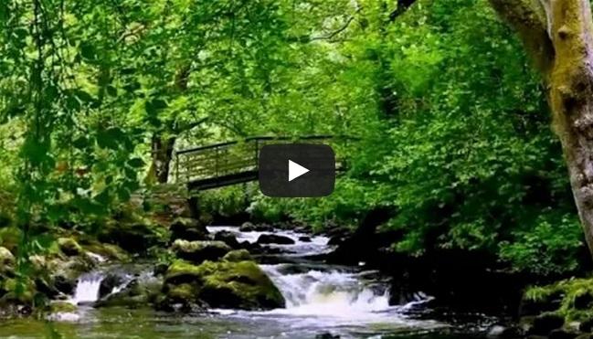 Insonnia? Una cascata per dormire sereni - (Video)