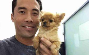 Riesce a salvare mille cani dal tragico festival di Yulia