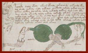 Voynich, il libro di magia più misterioso al mondo