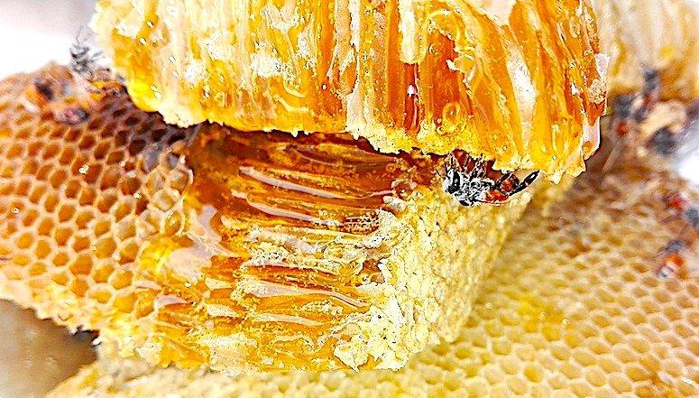 Miele, in 3/4 casi è contaminato da una famiglia di pesticidi