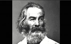 Walt Whitman Se tardi a trovarmi insisti