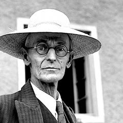 Hesse: 'Ogni uomo sente il bisogno di affezionarsi a qualcuno per dargli prova del suo amore'