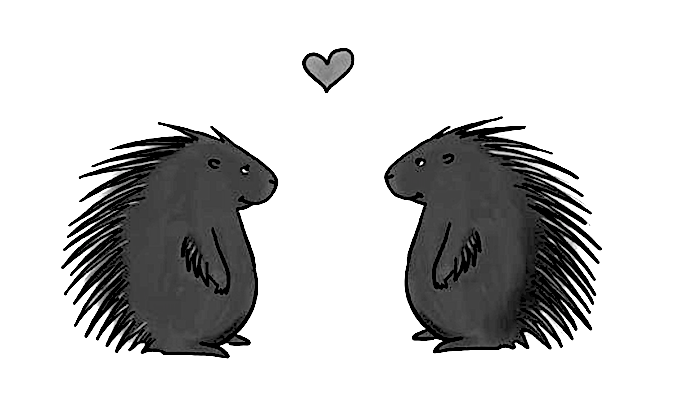 Il dilemma del porcospino e la giusta distanza nelle relazioni